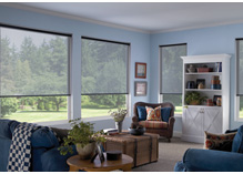 Patrician Window Coverings Sample Order Forms